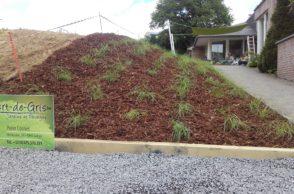 création-plantations d'arbres-arbustres-plantation-plantes-graminées-vertdegris-1